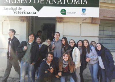 Bachillerato – Facultad de Veterinaria