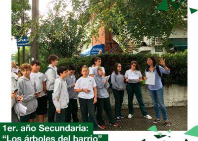 """2018: 1er año Secundaria, proyecto """"los árboles de mi barrio"""""""