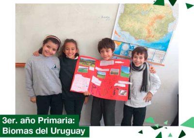 2018: 3er. año Primaria investigó los Biomas del Uruguay