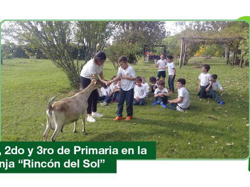 2019: 1ro, 2do y 3ro de Primaria en la granja «Rincón del Sol»