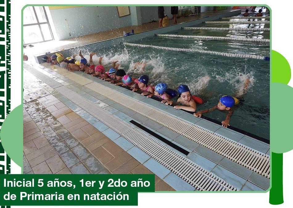 2019: inicial 5 años, 1ro y 2do año de Primaria en natación