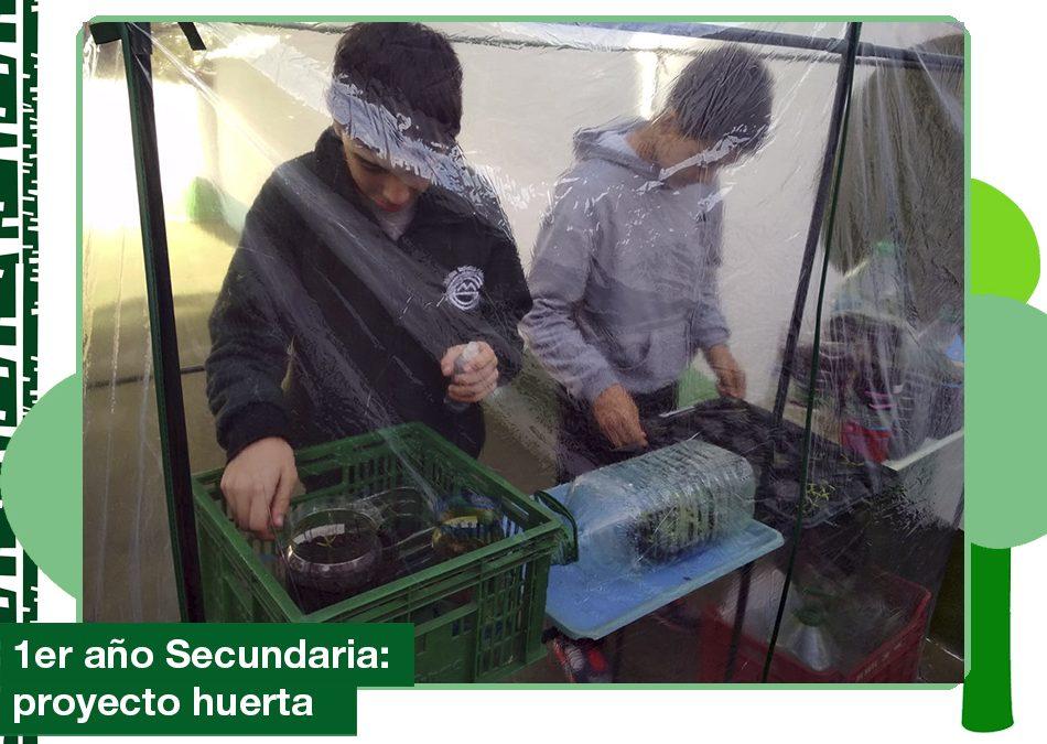 Junio 2019: Proyecto Huerta