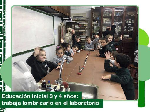 2019: Ed. Inicial 3 y 4 años trabaja con el lombricario en el laboratorio