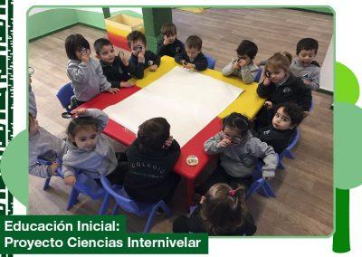 2019: Proyecto Ciencias Internivelar.