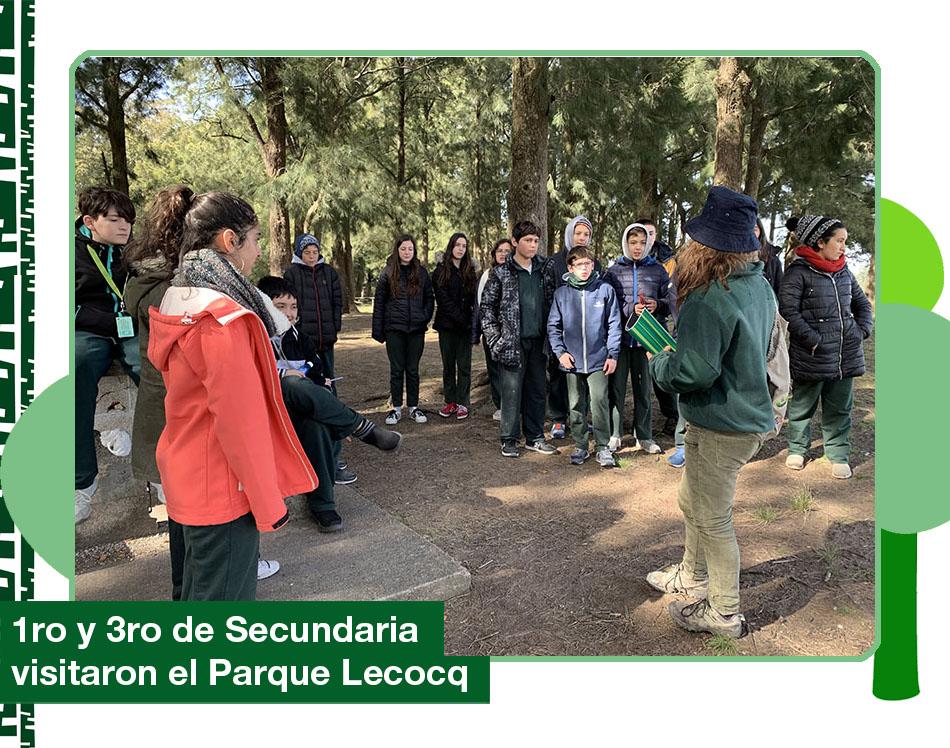 2019: Parque Lecocq
