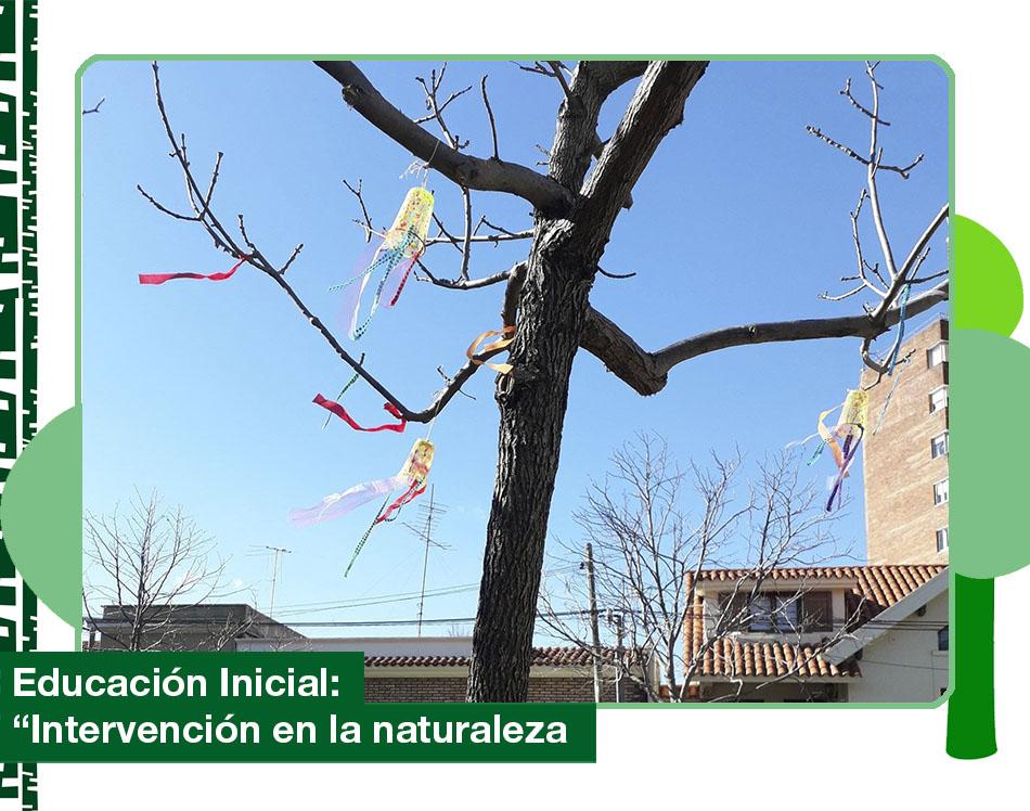 2019: «Intervención en la naturaleza»