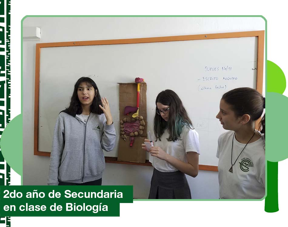 2019: 2do año de Secundaria en clase de Biología