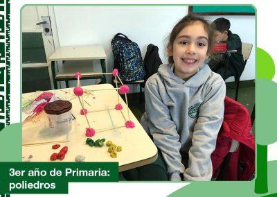 3er año de Primaria creando poliedros.