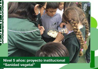 2020: nivel 5 años «Sanidad vegetal»